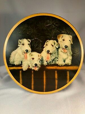 Vintage Tin Features Images Of 4 Sealyham Or Cesky Terrier Dogs, 10""