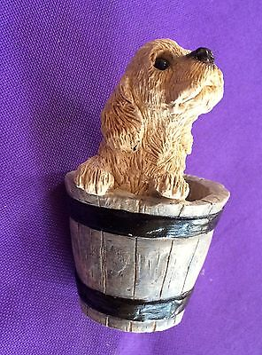 "Unique Buff Cocker Spaniel Sitting in a Bucket of Water 4""T x 2.5""W Fast Shipp'g"