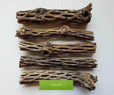 Cholla Wood, shrimp, pleco, aquarium decoration. Approx. 20 - 30 mm diameter