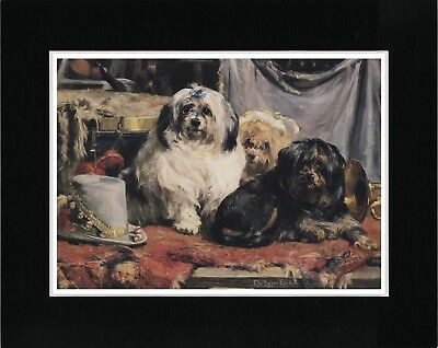 Lhasa Apso Early Dogs Vintage Style Dog Art Print Ready Matted