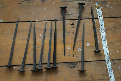 Hand forged rose head 18 cm nails (10) - Baileys Home and Garden