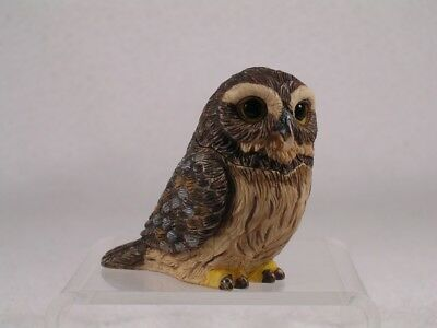 Harmony Kingdom / Ball Pot Bellys Belly 'Pygmy' Owl #PBZOW6 Retired New In Box