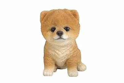 Sitting Pomeranian Puppy Life Like Realistic Statue  Figurine Home Garden Decor