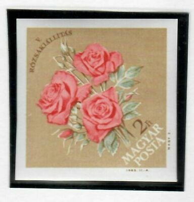 s22252) HUNGARY MNH** 1963 Roses expo 1v IMPERFORATED