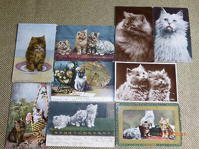 9 x OLD POSTCARDS REAL PHOTOGRAPHS OF CATS JWB VALENTINE TUCK 1903 TO 1912