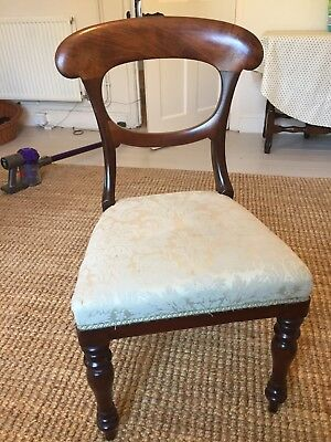 dining chairs oak Daron antique