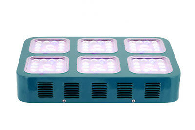 600W LED Grow Light Full Spectrum Hydroponics for Indoor Plants Veg Bloom Panel