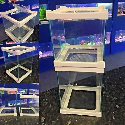 Display & Breeding Small Stack-able Glass Pet Reptile Insect Betta Shrimp Tank