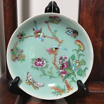 Chinese late Qing Hand Made/Painted Famille Rose flowers/butterflies/Birds-Nice!