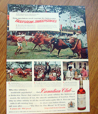 1956 Canadian Club Whiskey Ad Indonesia's Bull Derby
