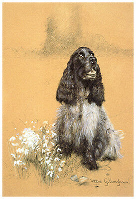"Cocker Spaniel Roan Hund Kunst Limited Edition Druck - "" Patience """