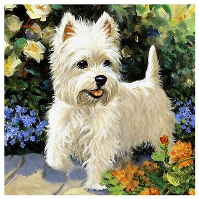 10X(DIY 5D Diamond Embroidery Painting Cross Stitch Kit Flower Animal Home L4Y7