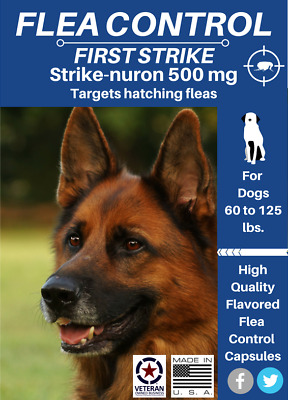 Flea Control for Large Dogs 60 to 125 pounds, 24 Flavored Capsules 500 mg