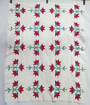 """Antique Late 19th c Hand Pieced Carolina Lily Applique Quilt Top 54"""" x 65"""" yqz"""