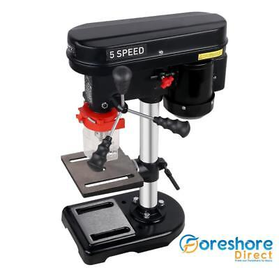 Power Bench Drill Press 13mm Stainless Chuck 50mm 45 Degree Table 400W 5 Speed