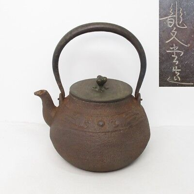 A222: Japanese old iron kettle TETSUBIN by famous RYUBUN-DO with relief work