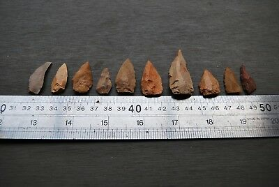 10 fine old Aboriginal knapped stone spear points - superb study group