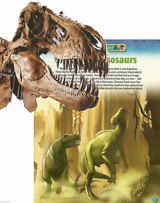 DISCOVERING DINOSAURS Meet the Dinosaurs BOOKLET > With 30 inch Fold-Out
