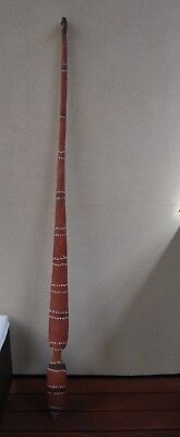 Very Long Aboriginal woomera spear thrower Kimberley's Region OLD 140cm