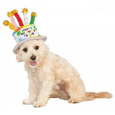 Birthday Cake Hat Costume Accessory Pet Halloween