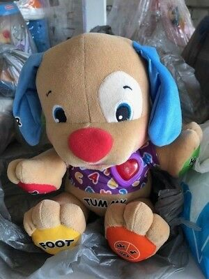 Fisher Price Musical Puppy Activity Toy