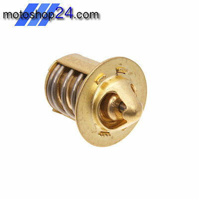 NEU THERMOSTAT Italjet Dragster 50 / Motowell Crogen 50 LC Magnet 50 RS LC