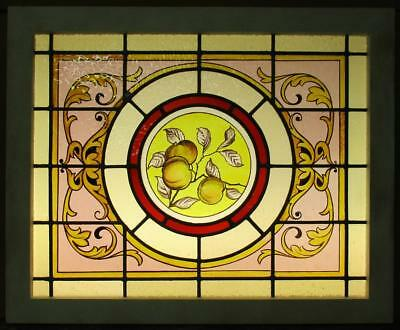 "MID SIZED OLD ENGLISH LEADED STAINED GLASS WINDOW Vict. HP Peaches 27.5"" x 22.5"""