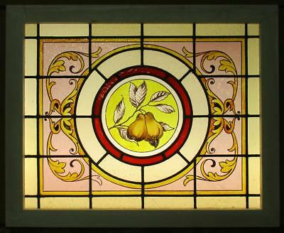 "MID SIZED OLD ENGLISH LEADED STAINED GLASS WINDOW Vict. HP Pears 27.5"" x 22.5"""