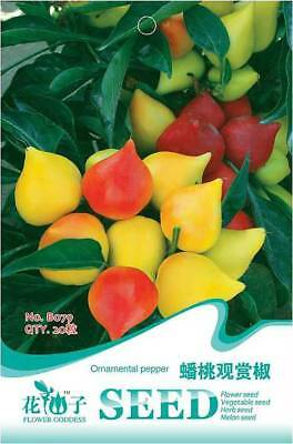 Original Package 20 Peach Ornamental Pepper Seeds Capsicum Vegetable B079