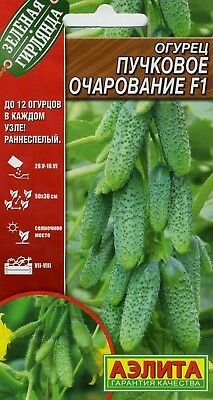 "Cucumber ""Beam charm F1"". Russian High Quality."