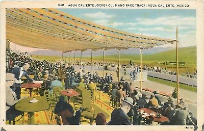 Agua Caliente Mexico~Jockey Club And Race Track~Stands~Waiter Wipes Table~1939