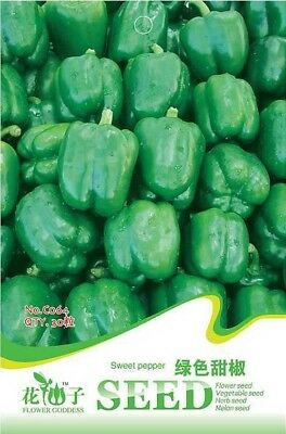 Original Package 30 Sweet Pepper Seeds Capsicum Annuum Green Sweet Pepper C064