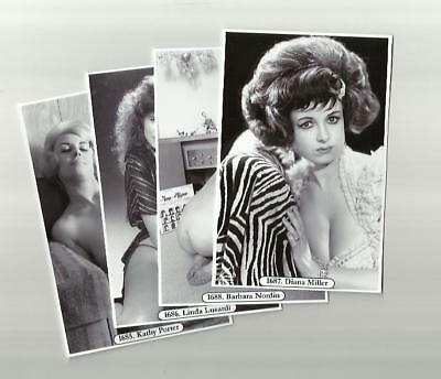 SET 1685-1688 MODELS & SHOW GIRLS GLAMOUR  PHOTO POSTCARDS FILM STAR pin up