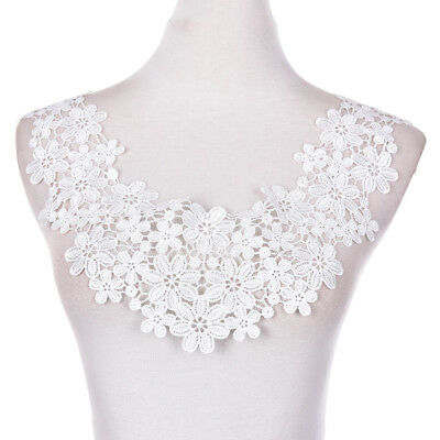 1PC Embroidered Floral Lace Neckline Neck Collar Trim Clothes Sewing Patch Nice