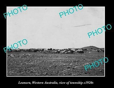 OLD LARGE HISTORIC PHOTO OF LEONORA WESTERN AUSTRALIA, VIEW OF TOWNSHIP c1920