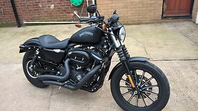 Harley Davidson Iron Sportster Immaculate 1,400 miles 1 Owner