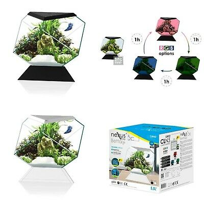 Ciano Nexus Betta Tank Glass Aquarium with Colour Changing LED Light & Filter