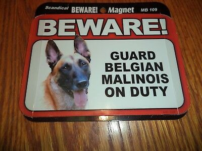 Beware Guard Belgian Malinois On Duty Magnet