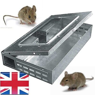 Mouse Trap Humane Metal Catch Pest Control Mice Catcher Rodent Multicatch Box