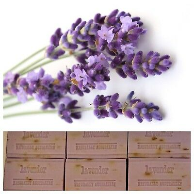 Soap Tasmanian Lavender All Natural 8 X 100g Bars Bulk - Flowers - Soaps -