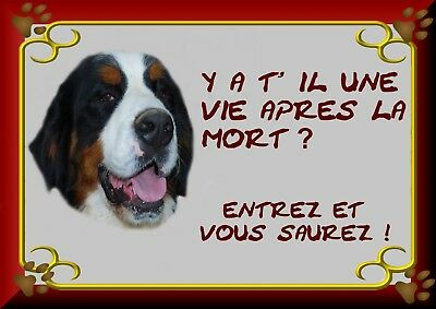 Pancarte Attention Chien Plastifiee Saint Bernard 3