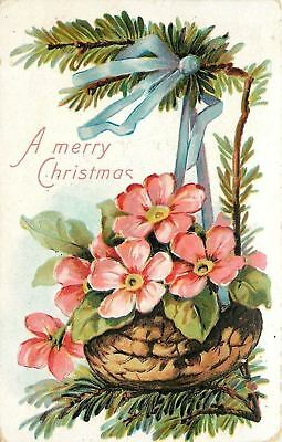 Christmas~Pink Flower Blossoms in Walnut Shell~Pine Decoration~Embossed~1911