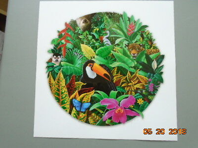 Charles Lynn Bragg. Rain Forest Magic. Toucan. Artists Proof #22/100