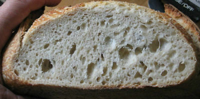 "SAN FRANCISCO SOURDOUGH BREAD STARTER yeast mix ""sally""  TOP SELLER + recipes@"