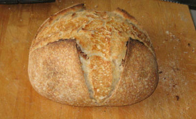 "TOP SELLER SAN FRANCISCO-ZOURDOUGH SOURDOUGH STARTER- ""sally"" + many recipes@"