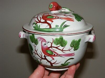 Rare Pattern Birds 19Th C French Faience Tureen Luneville Strasbourg