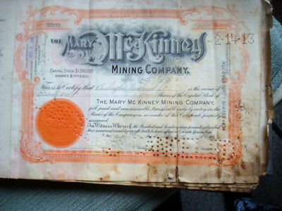 Mary McKinney Mining Co. Cancelled Stock Certificates Record Book