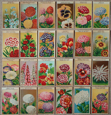 24 Different Vintage FRENCH Flower Seed Packet Labels genuine 1920's lithographs