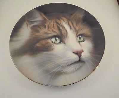Heraldic Fine Bone China Staffordshire Long Hair Cat Collector Plate