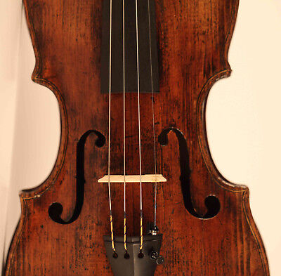 old italian violin labeled D. Tecchler 1721 violon geige cello viola 小提琴 ヴァイオリン